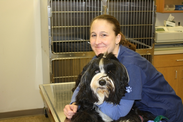 Larissa and Ozzie Bearded Collie patient